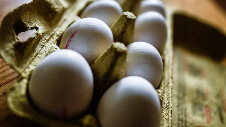 Die Behörden haben in Schweizer Eiern keine Spuren des Insektizids Fipronil gefunden. (Archivbild)