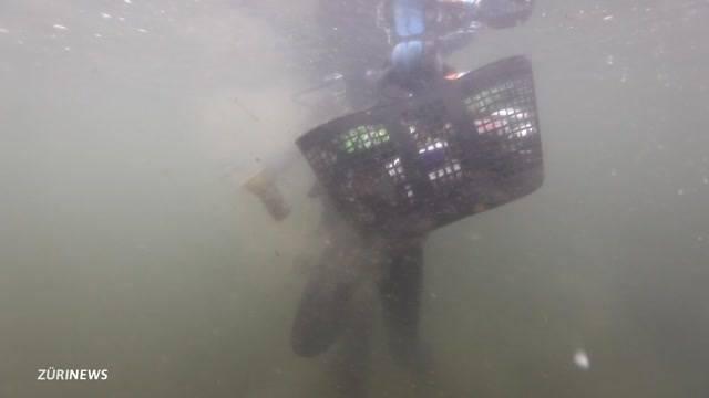 Polizei fisch tonnenweise Abfall aus Limmat