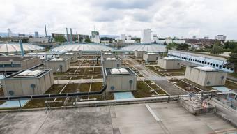 *ARA-Basel-Rundgang* (ProRheno AG) Ein Einblick in die 35-jährige Abwasserreinigungs-Anlage. Reihenfolge: Station 5 Die Biologie von oben gesehen
