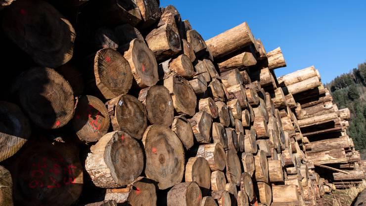 Die Lager in Schweizer Sägereien sind voll, doch niemand will Holz kaufen. (Symbolbild)