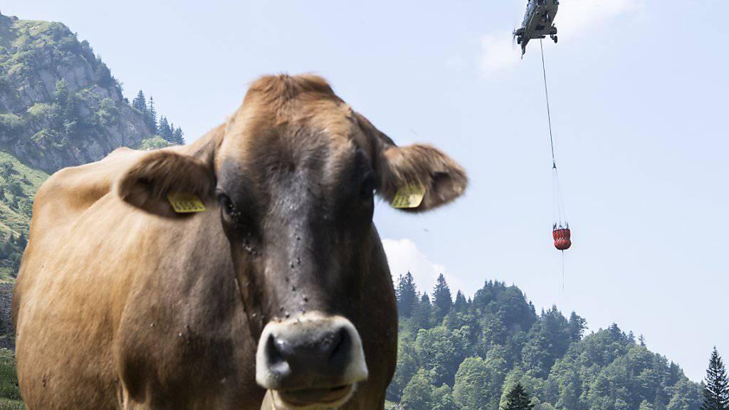 Wasser für durstige Kühe nur per Helikopter: Im vergangenen Sommer waren die Folgen des Klimawandels für die Landwirtschaft besonders spürbar.(Archivbild)