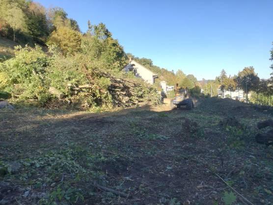Am 4. Oktober wurden die Bäume neben der Liegenschaft Baslerstrasse 32 in Bruggvom Forstbetrieb gefällt, weil hier eine Überbbauung entsteht.Was mit dem Müligässli passieren wird, ist nicht klar.