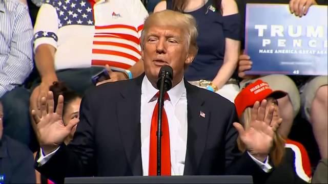 Ein Jahr Donald Trump