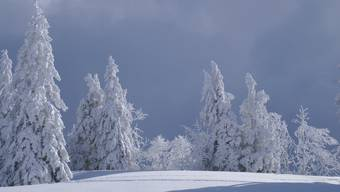 Wird der Grenchenberg an Weihnachten so beschneit sei?