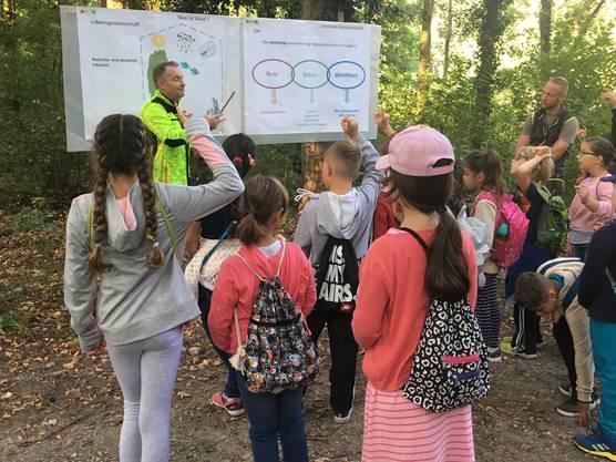 Der Förster Daniel Kleger erklärt den Kindern die Aufgaben vom Wald