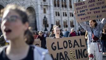 Am heutigen Freitag sind weltweit zahlreiche Demonstrationen für mehr Klimaschutz geplant. (Symbolbild)