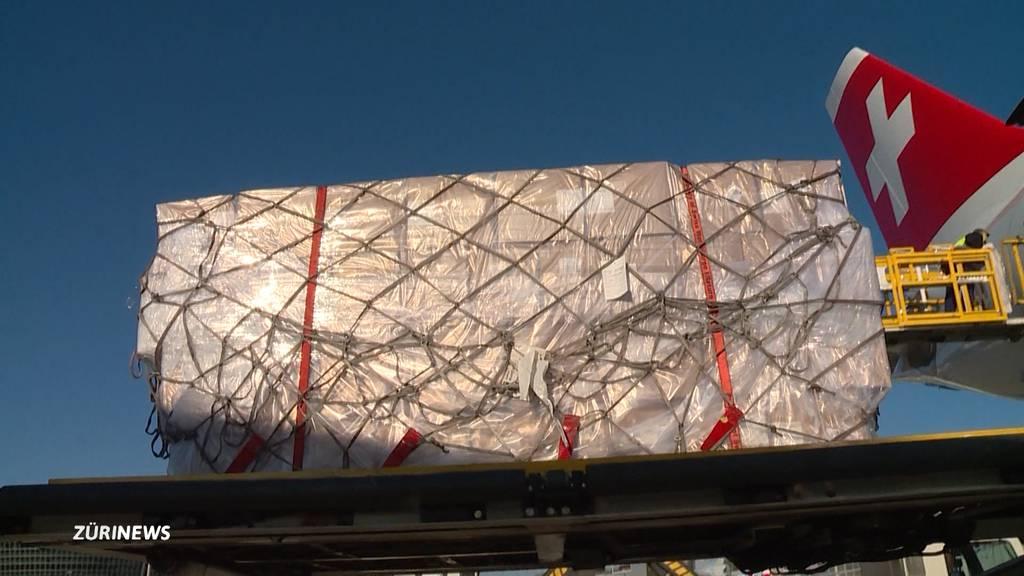 Tonnenweise Schutzmaterial aus China eingetroffen