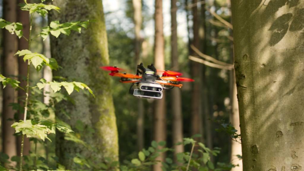 Drohne fliegt autonom durch unbekanntes Gefilde