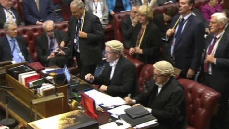 Das Brexit-Gesetz hat das britische House of Lords passiert - nach dem Oberhaus muss jetzt Königin Elizabeth II. ihre Zustimmung für den Antrag zum Ausstieg aus der EU geben.