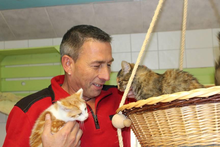 Marcel Jung vom Tierheim Papageienhof hat dieses Jahr schon rund 70 Katzen auf seinem Hof aufgenommen. ©FM1Today