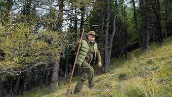 Immer wieder werden Fotos des russischen Präsidenten beim Abenteuerurlaub veröffentlicht. Seinen 67. Geburtstag feierte er beim Pilzesammeln in Sibirien.