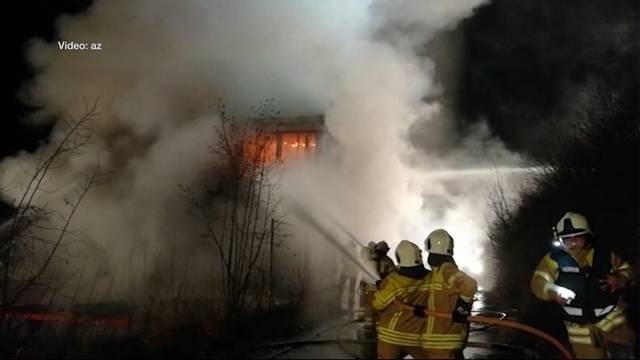 Klingnau: 600 Zander fallen den Flammen zum Opfer