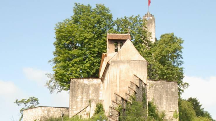 Auf Schloss Stein werden Aufwertungsmassnahmen für die Pflanzen und Tiere vorgenommen.
