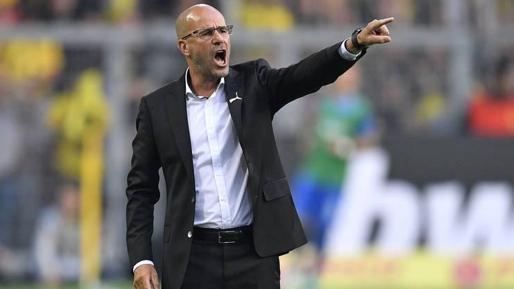 Peter Bosz heisst der neue Trainer in Leverkusen.