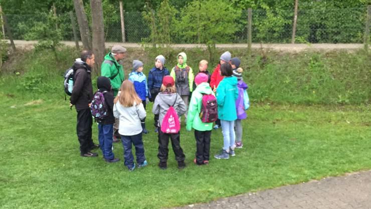 In kleinen Gruppen wurden die 4.-Klässler vom Schulhaus durch den Wald auf den Lotten begeleitet