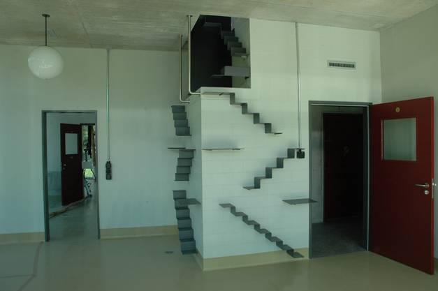 Über Leitern haben die Katzen direkten Zugang zur Dachterrasse