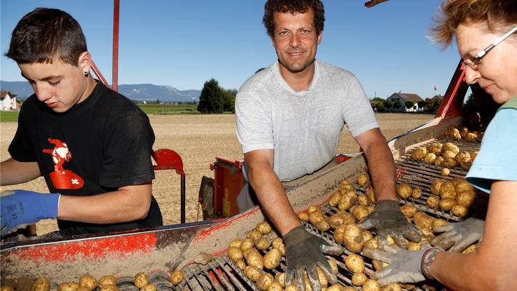 Landwirt-«Stift» Samuel Mollet, Ruedi Fischer und seine Schwester Kathrin Fischer haben bei der Kartoffelernte alle Hände voll zu tun. bilder: Hanspeter Bärtschi