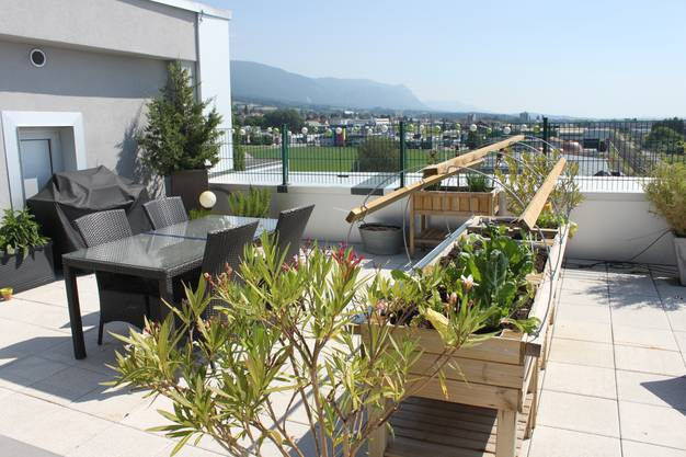 Auf dem Dach der Seniorenresidenz können Bewohner Gemüse pflanzen