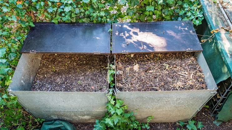 Aktiver und ruhender Kompost am Schützengraben bei der Lyss.