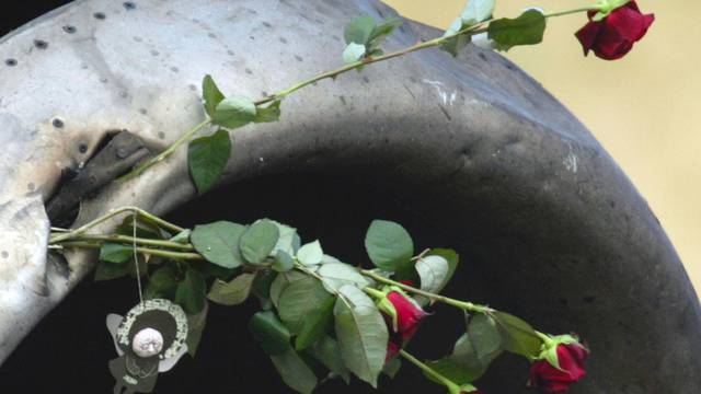 Rosen an Wrackteil von abgestürztem Flugzeug (Archiv)