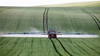 Dank Robotern könnte der Einsatz von Pestiziden stark gesenkt werden.