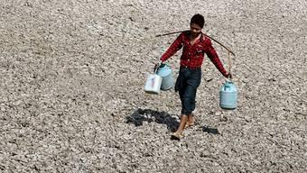 Mehr Dürren auf der Welt verursachen eine höhere Konzentration von CO2 in der Atmosphäre: Dadurch fehlen nämlich die Pflanzen, die das Treibhausgas absorbieren könnten. (Symbolbild)