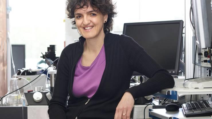 Silvia Arber fühlt sich in ihrem Labor am wohlsten.