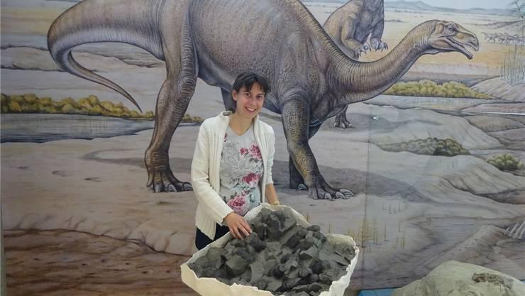 Museumsleiterin Andrea Oettl freut sich sehr über den Fund. Das Gelege mit den 22 Dinosaurier-Eiern wurde mit Gips stabilisiert.