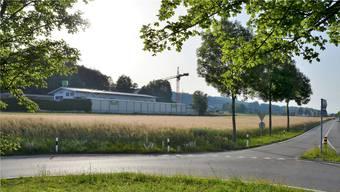 Die Umzonung des Gebiets «Geere» ist beschlossen. Jetzt bleiben der Taracell AG fünf Jahre, um ihr Baugesuch für die 18'541 m2 einzureichen.