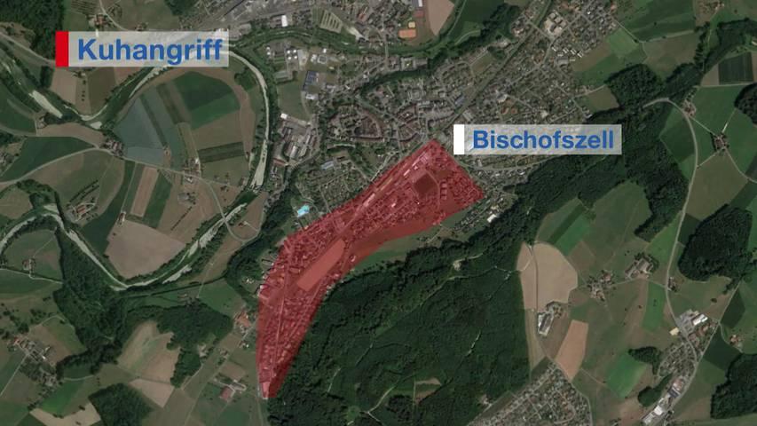 Abgehauen: Kuh verletzt in Bischofszell zwei Personen