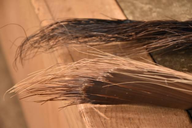 Barten bestehen aus dem gleichen Material wie die Hörner einer Kuh oder die Hufe eines Pferdes.