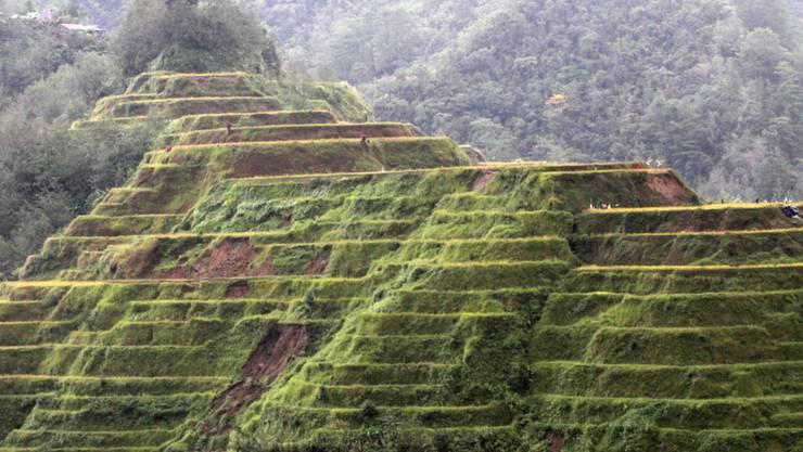 Die philippinische Hauptinsel Luzon, wo sich der Verkehrsunfall ereignete. (Archivbild)