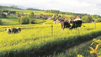 Lüterkofen-Ichertswil