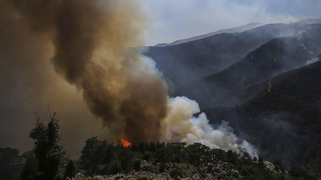 Rauch und Flammen steigen empor während eines Waldbrandes in Koycegiz, in der Provinz Mugla im Südwesten der Türkei. Seit dem 28. Juli kämpfen Einsatzkräfte gegen die massiven Waldbrände inmitten einer heftigen Hitzewelle.