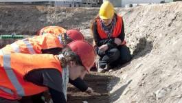 Die Skelette werden sorgfältig und nach neuesten wissenschaftlichen Erkenntnissen ausgegraben.