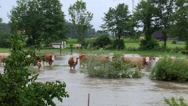 Schon wieder Hochwasser