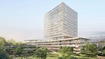 Herzog & de Meurons Vorschlag für den Neubau beim Basler Unispital