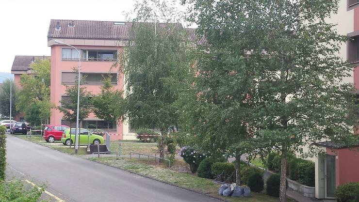 Grosseinsatz in Brugg: In einer Wohnung ist ein Feuerwerkskörper gezündet worden.