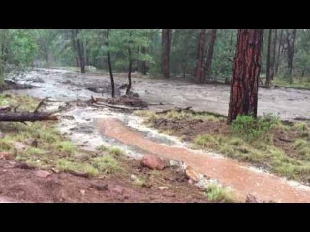 Flash flooding in Ellison Creek Sturzflut