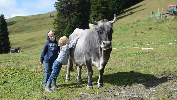 Zwischen Kindern und Kühen entsteht ein inniges Verhältnis.