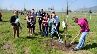 18 neue Bäume werden im Stryker Babywald gepflanzt