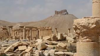 Altertümer in Palmyra in einer vor einem Jahr verbreiteten Aufnahme