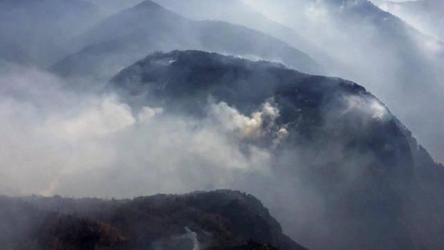 Folge der extremen Hitze: Waldbrände in Albanien