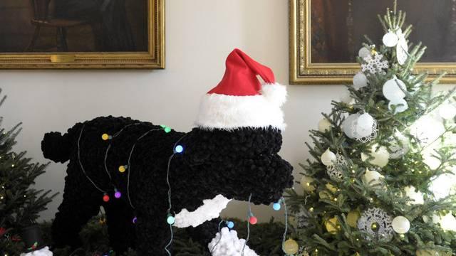 Weihnachtsdeko Hund.Präsidenten Hund Bo Inspiziert Weihnachtsdeko Im Weissen Haus