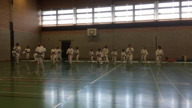 Karateshow von Anton Grgic