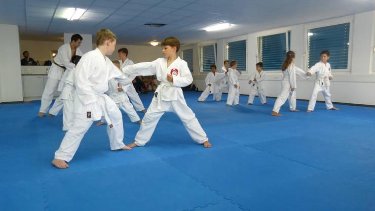 Nachwuchs-Karatekas der Shinsei Kan Karateschule mit voller Konzentration bei der Partnerübung.