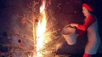 Ein Eimer mit Wasser nahe des Baumes ist Pflicht (Gestellte Szene)