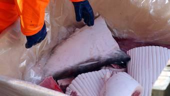 Island will in diesem Jahr aufgrund der kompetitiven Preise sowie wegen der Coronavirus-Krise auf den Walfang verzichten. (Archivbild)