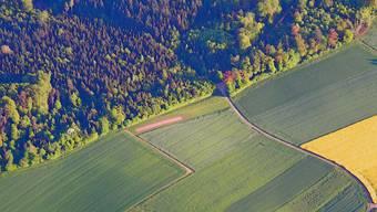 So sieht die 60 Meter lange Piste der Modellfluggruppe Unterburg in Wenslingen aus der Luft aus.