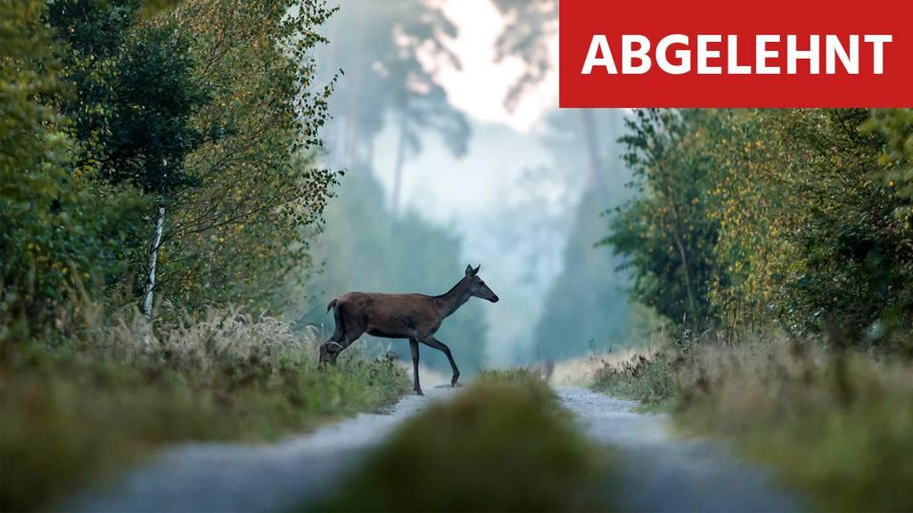 Bevölkerung zeigt Herz für Wolf: Jagdgesetz ist abgelehnt